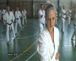 karate_v
